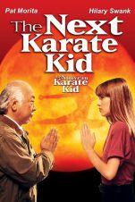 Le Nouveau Karaté Kid