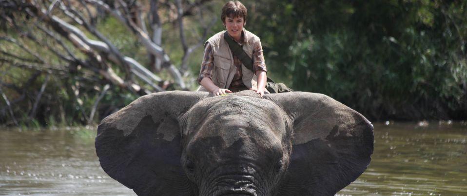 L'aventure d'un éléphant