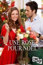 Une rose pour Noël