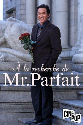 À la recherche de Mr. Parfait